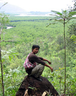 Southern Thailand Andaman tourism - jungle trek