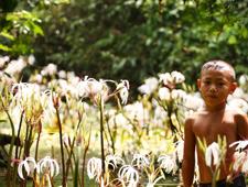 Nakha River Lily
