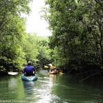 Eco Adventure Island Koh Kho Khao