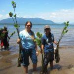 AD Staff Mangrove Planting