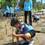 Student Planting Mangrove Tree