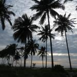 Lovely pristine beach