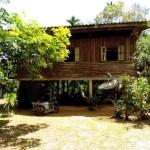 homestay in Khao Phang community Khao Sok Thailand