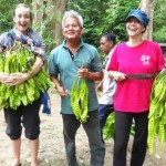 Orchard excursion at our homestay in Thailand in Sai Khao Patthani